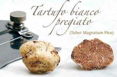 Delizie al TARTUFO BIANCO